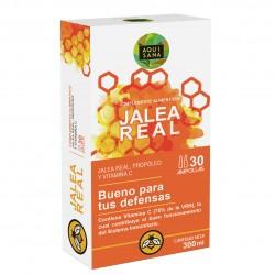 Jalea real con propóleo para mayor energía y vitalidad | Jalea con própolis y vitamina C para reforzar nuestro sistema inmune – 30 ampollas